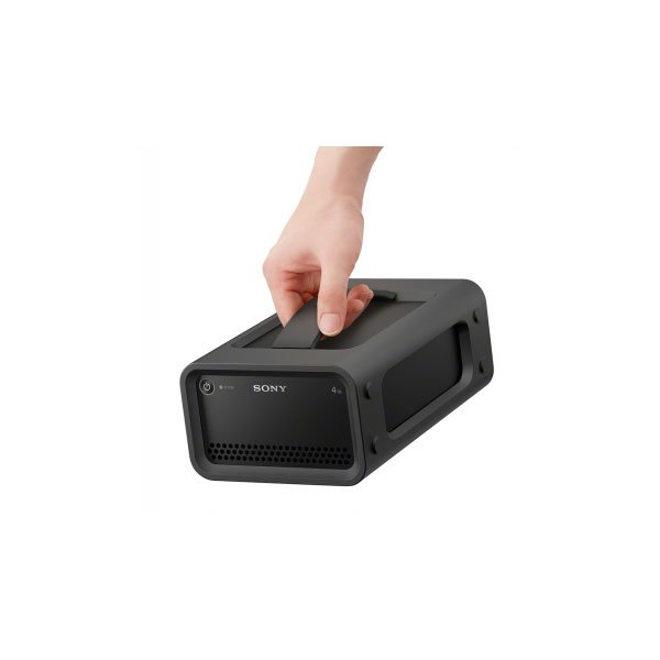 Sony PSZ-RA4T - HDD и RAID