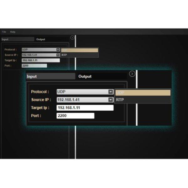 EMS  Easy IP multiplexer - Easy Media Suite